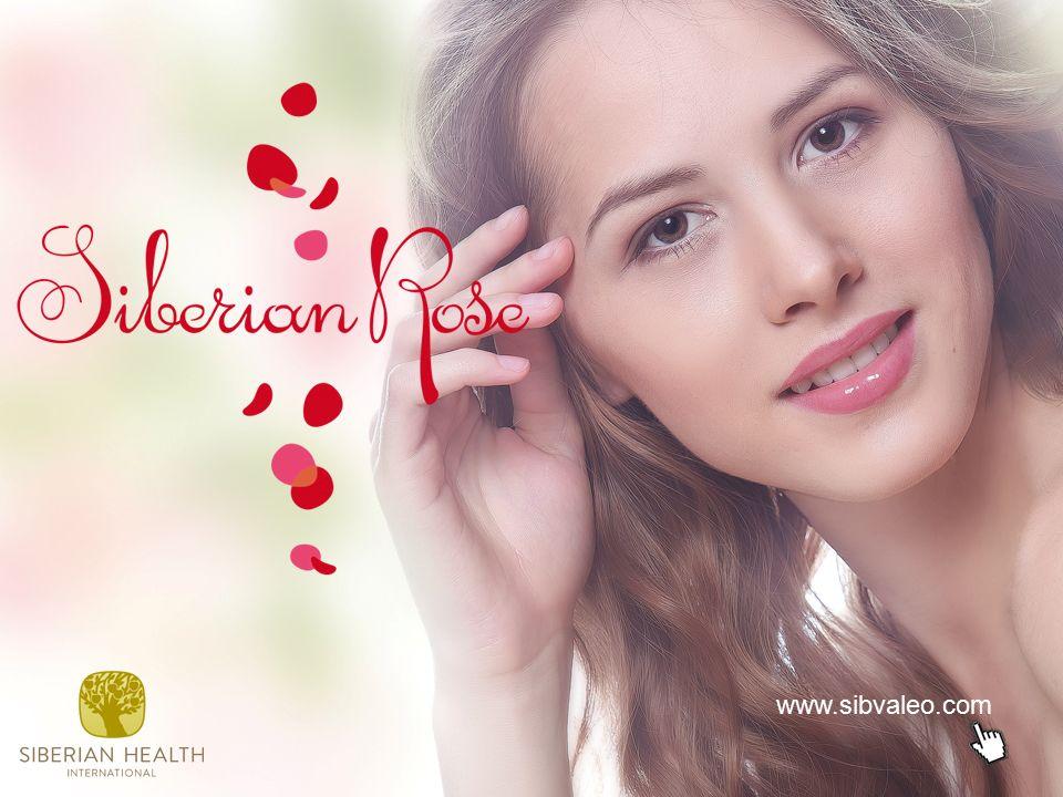 www.sibvaleo.com