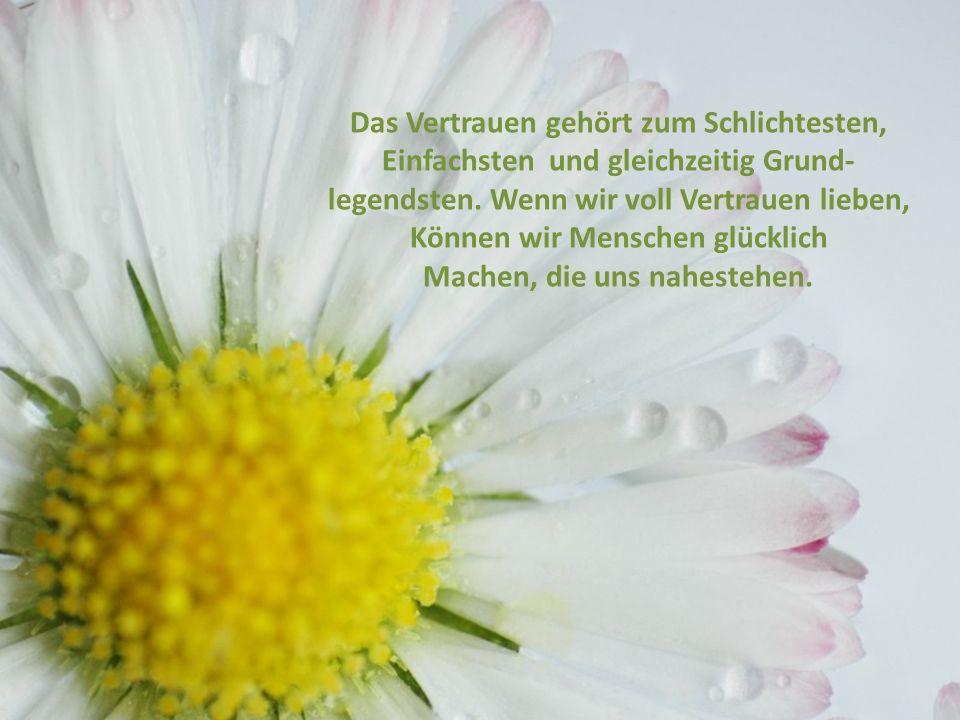 Vertrauen schenken Unsere Freundschaft ist so lebendig und Heiter wie eine Blumenwiese.
