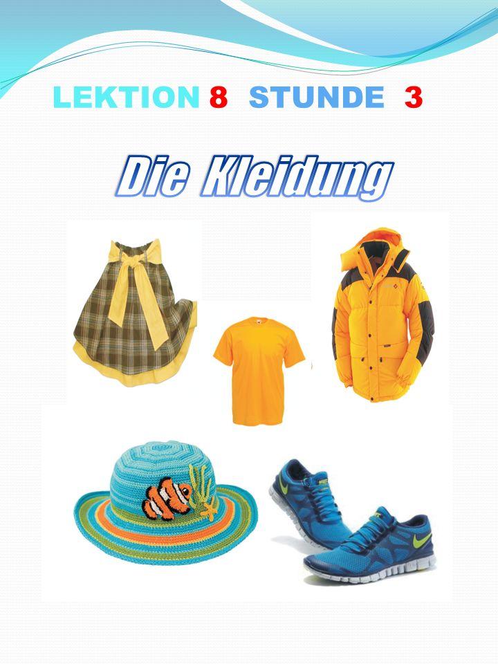 LEKTION 8 STUNDE 3