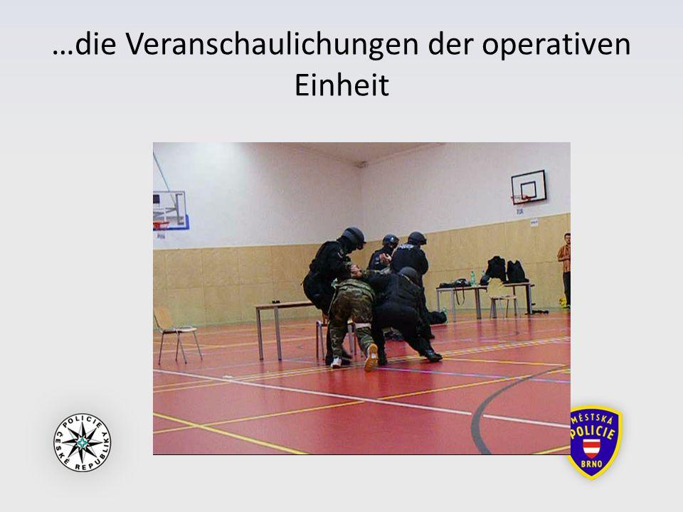 …die Veranschaulichungen der operativen Einheit