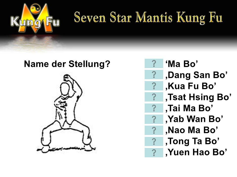 'Ma Bo' 'Dang San Bo' 'Kua Fu Bo' 'Tsat Hsing Bo' 'Tai Ma Bo' 'Yab Wan Bo' 'Nao Ma Bo' 'Tong Ta Bo' 'Yuen Hao Bo' Name der Stellung?