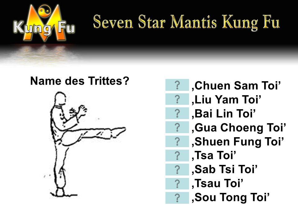 'Chuen Sam Toi' 'Liu Yam Toi' 'Bai Lin Toi' 'Gua Choeng Toi' 'Shuen Fung Toi' 'Tsa Toi' 'Sab Tsi Toi' 'Tsau Toi' 'Sou Tong Toi' Name des Trittes?