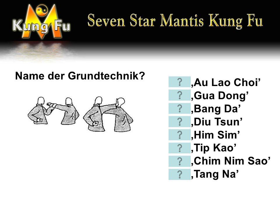'Au Lao Choi' 'Gua Dong' 'Bang Da' 'Diu Tsun' 'Him Sim' 'Tip Kao' 'Chim Nim Sao' 'Tang Na' Name der Grundtechnik?