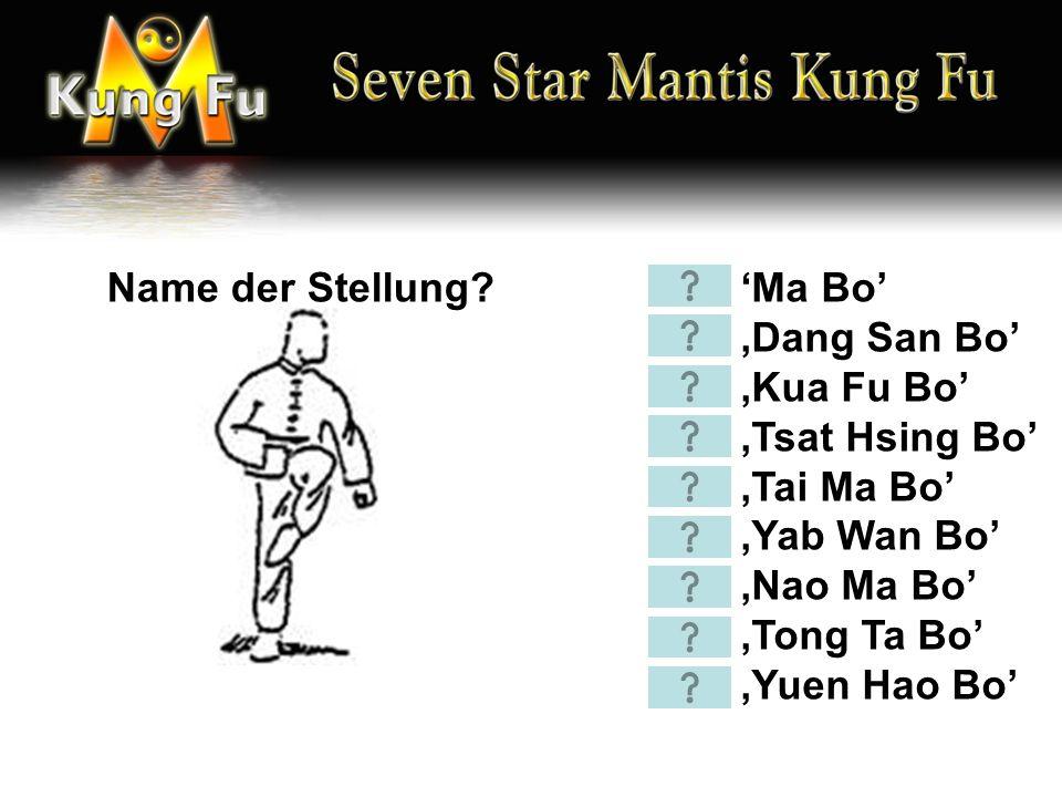 'Tong Ch'oi' 'Huen Ch'oi' 'Bang Ch'oi' 'Bek Ch'oi' 'Deng Tz'i Ch'oi' 'Tip Ch'ou' 'Fung Tong Ch'o' 'Tso Ch'oi' 'Diu Sao' 'Yan Cham Cham Miu' 'Sien Fung Sao' Name der Technik?