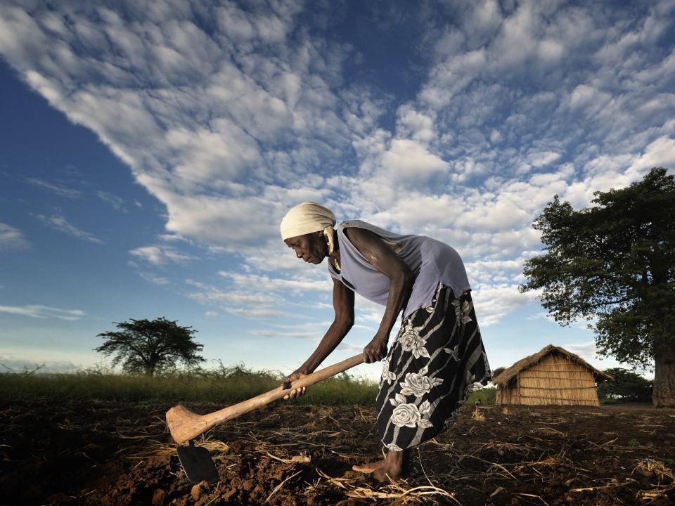 Ökumenische Kampagne 2013 Agroökologische Landwirtschaft als Ziel Die agroökologische Landwirtschaft steht im Einklang mit Mensch und Natur. -Sie brin