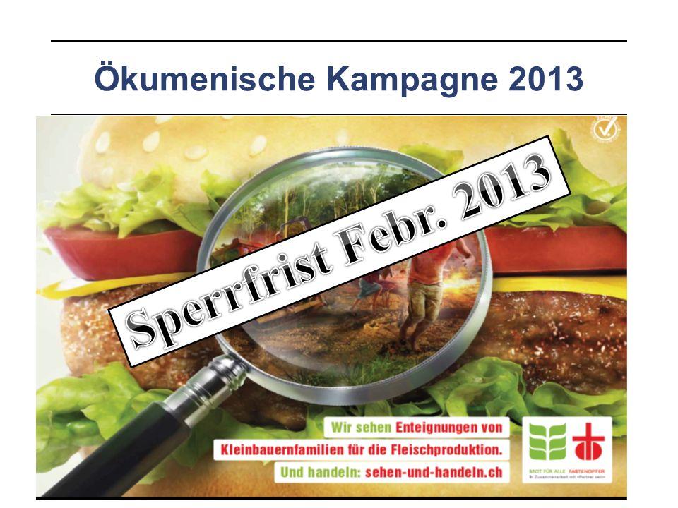 Ökumenische Kampagne 2013 3 Fragen: 1.Wer soll das Land bearbeiten, die Bauern und Bäuerinnen oder die Industrie.