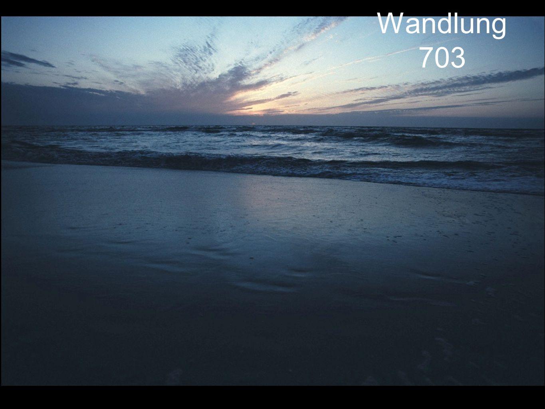Wandlung 703