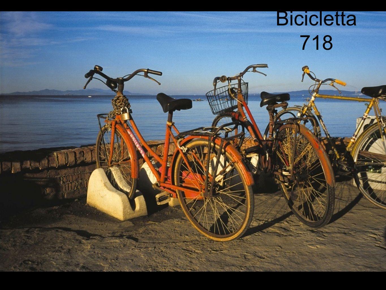 Bicicletta 718