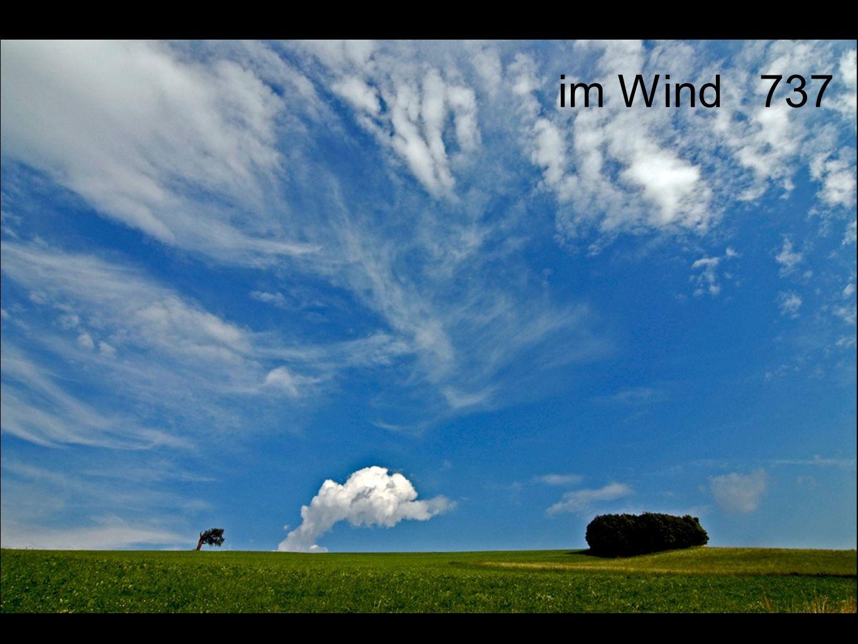 im Wind 737