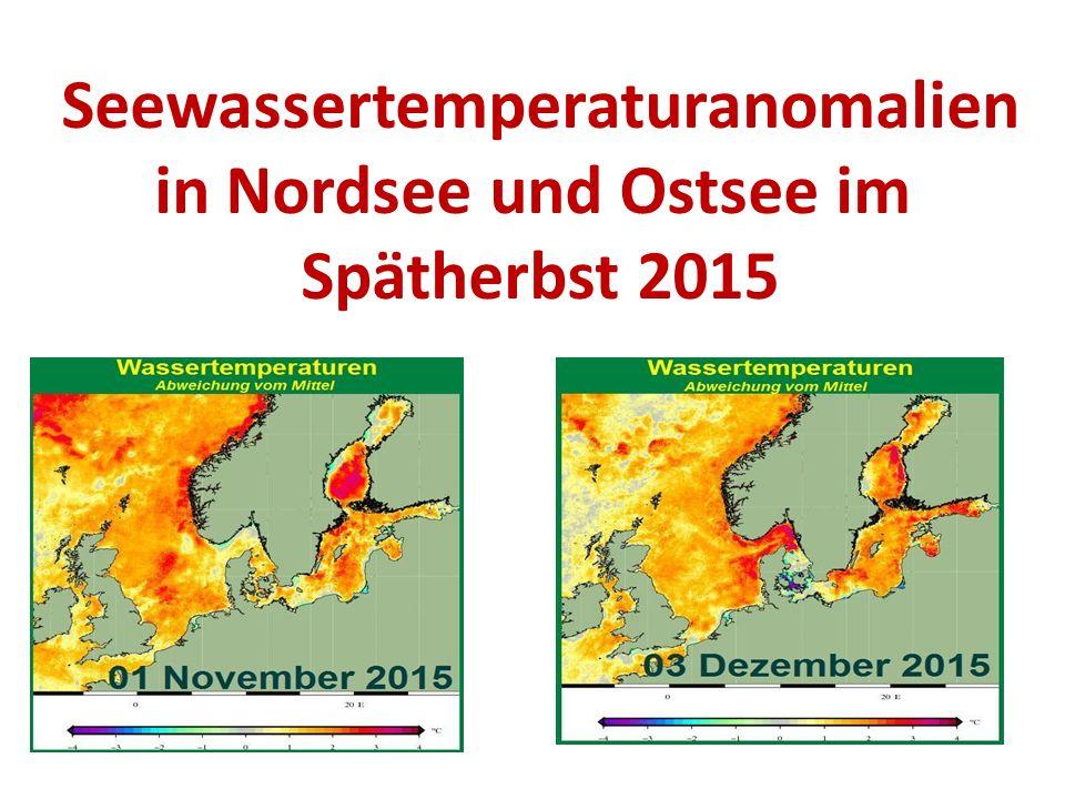 Seewassertemperaturanomalien in Nordsee und Ostsee im Spätherbst 2015
