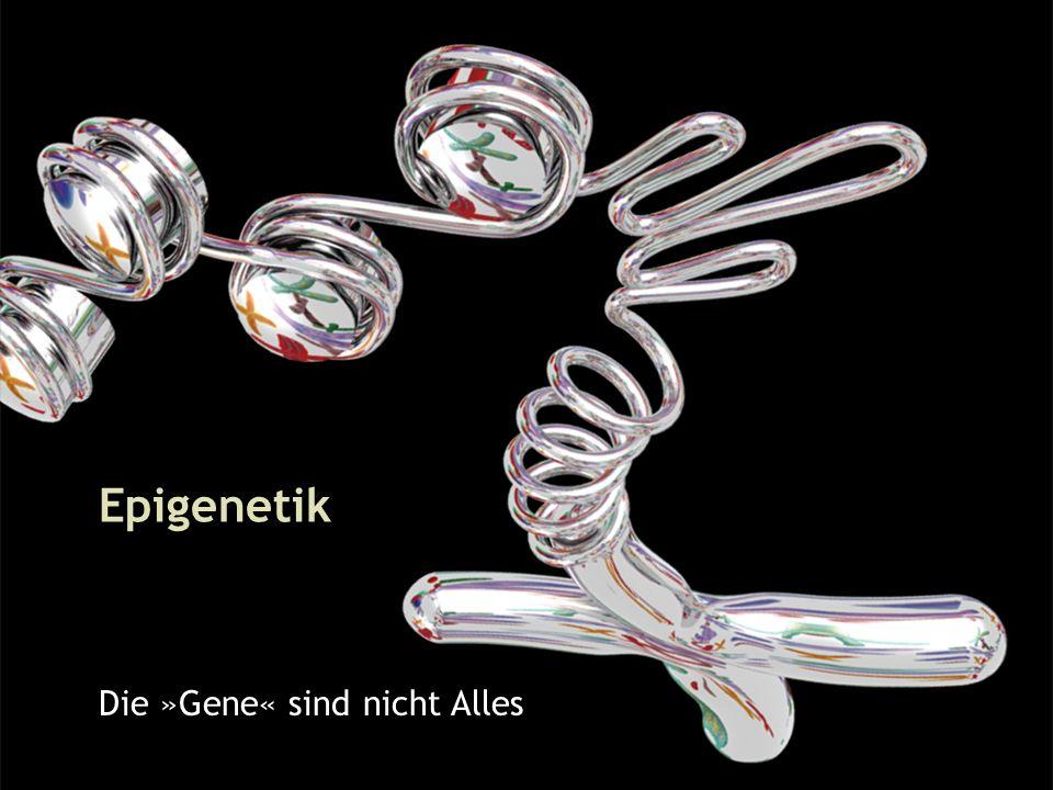 1 Epigenetik Die »Gene« sind nicht Alles