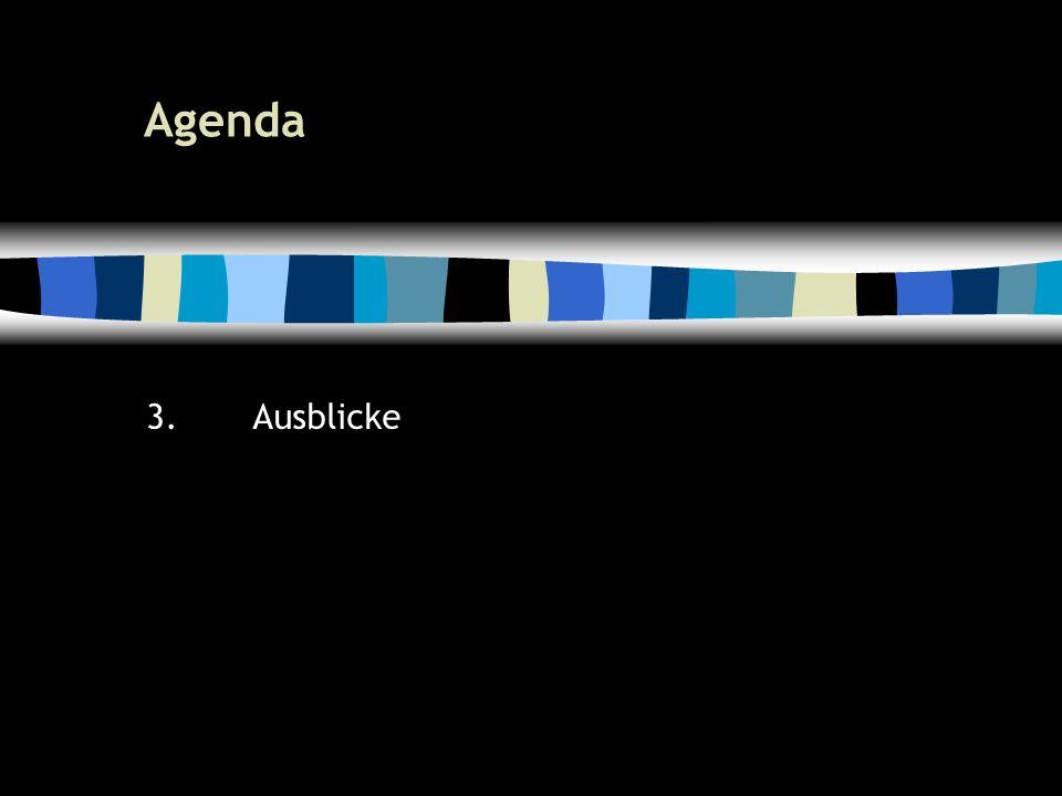 21 Agenda 3.Ausblicke