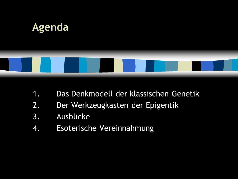 4 Agenda 1.Das Denkmodell der klassischen Genetik 2.Der Werkzeugkasten der Epigentik 3.Ausblicke 4.Esoterische Vereinnahmung