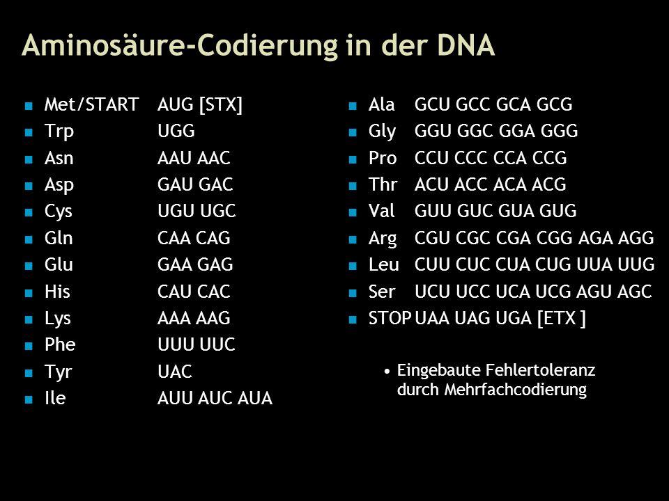 8 Aminosäure-Codierung in der DNA Met/STARTAUG [STX] TrpUGG AsnAAU AAC AspGAU GAC CysUGU UGC GlnCAA CAG GluGAA GAG HisCAU CAC LysAAA AAG PheUUU UUC Ty