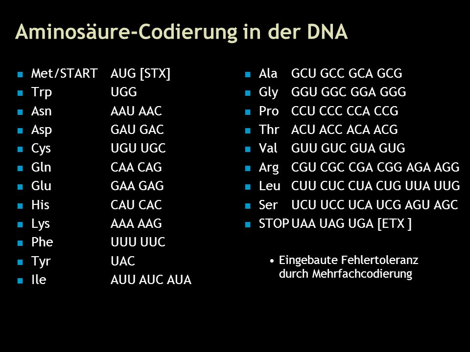 8 Aminosäure-Codierung in der DNA Met/STARTAUG [STX] TrpUGG AsnAAU AAC AspGAU GAC CysUGU UGC GlnCAA CAG GluGAA GAG HisCAU CAC LysAAA AAG PheUUU UUC TyrUAC IleAUU AUC AUA AlaGCU GCC GCA GCG GlyGGU GGC GGA GGG ProCCU CCC CCA CCG ThrACU ACC ACA ACG ValGUU GUC GUA GUG ArgCGU CGC CGA CGG AGA AGG LeuCUU CUC CUA CUG UUA UUG SerUCU UCC UCA UCG AGU AGC STOPUAA UAG UGA [ETX ] Eingebaute Fehlertoleranz durch Mehrfachcodierung