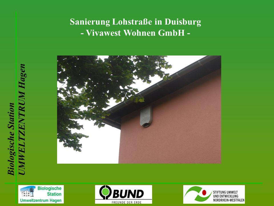 Biologische Station UMWELTZENTRUM Hagen Sanierung Lohstraße in Duisburg - Vivawest Wohnen GmbH -