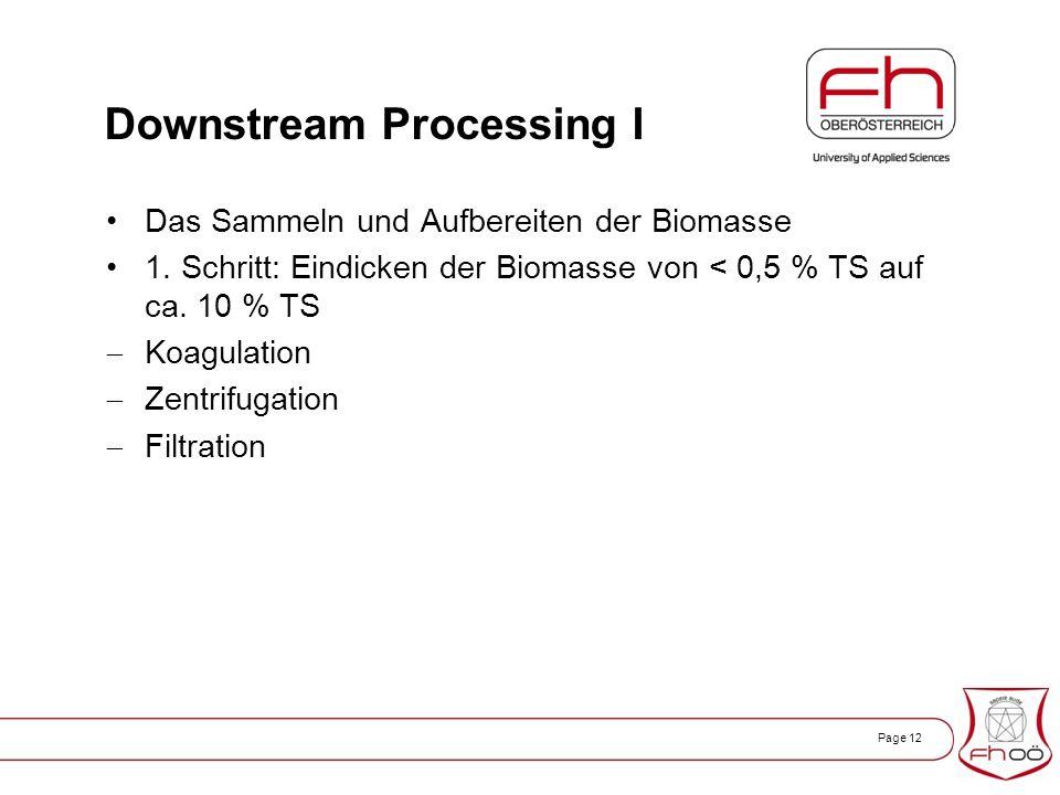 Page 12 Downstream Processing I Das Sammeln und Aufbereiten der Biomasse 1.