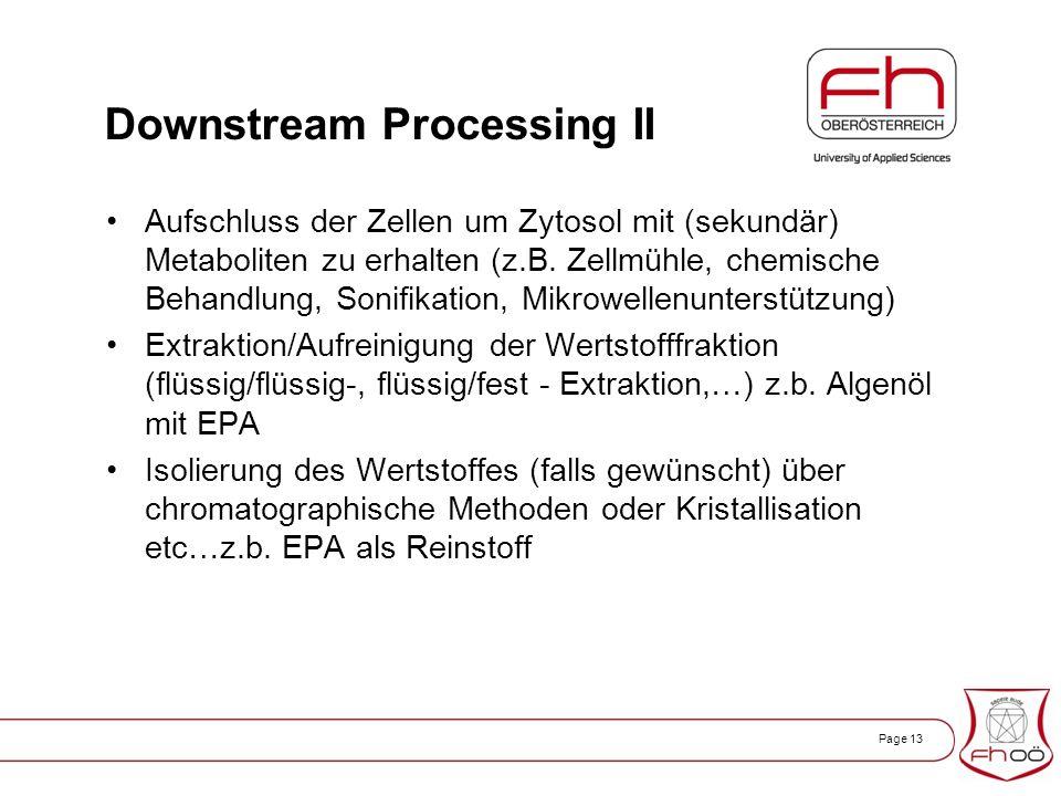Page 13 Downstream Processing II Aufschluss der Zellen um Zytosol mit (sekundär) Metaboliten zu erhalten (z.B.