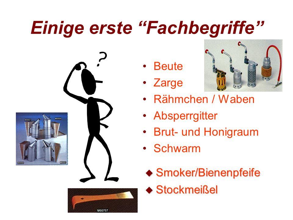 Einige erste Fachbegriffe Beute Zarge Rähmchen / Waben Absperrgitter Brut- und Honigraum Schwarm u Smoker/Bienenpfeife u Stockmeißel