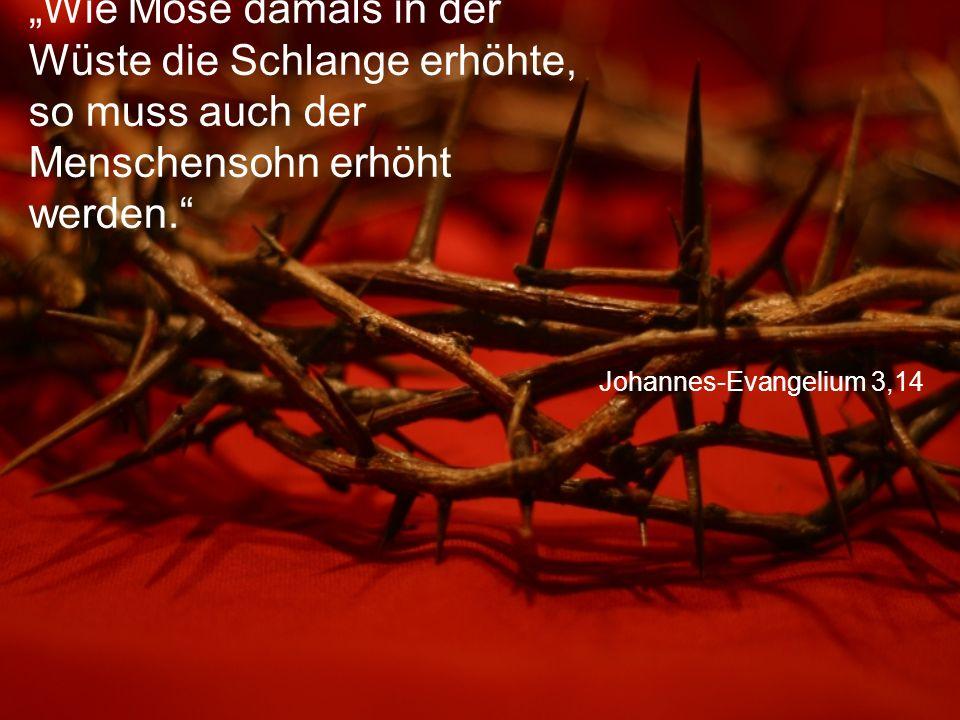 """Johannes-Evangelium 3,14 """"Wie Mose damals in der Wüste die Schlange erhöhte, so muss auch der Menschensohn erhöht werden."""""""