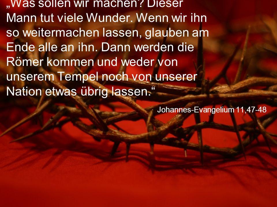 """Johannes-Evangelium 11,47-48 """"Was sollen wir machen? Dieser Mann tut viele Wunder. Wenn wir ihn so weitermachen lassen, glauben am Ende alle an ihn. D"""