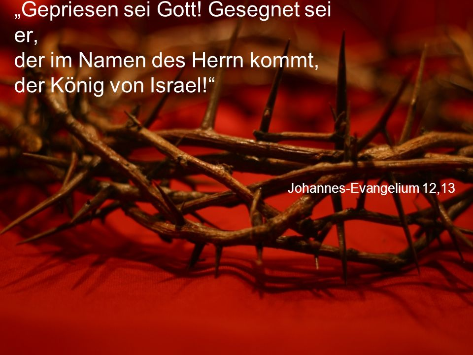 """Johannes-Evangelium 12,13 """"Gepriesen sei Gott! Gesegnet sei er, der im Namen des Herrn kommt, der König von Israel!"""""""