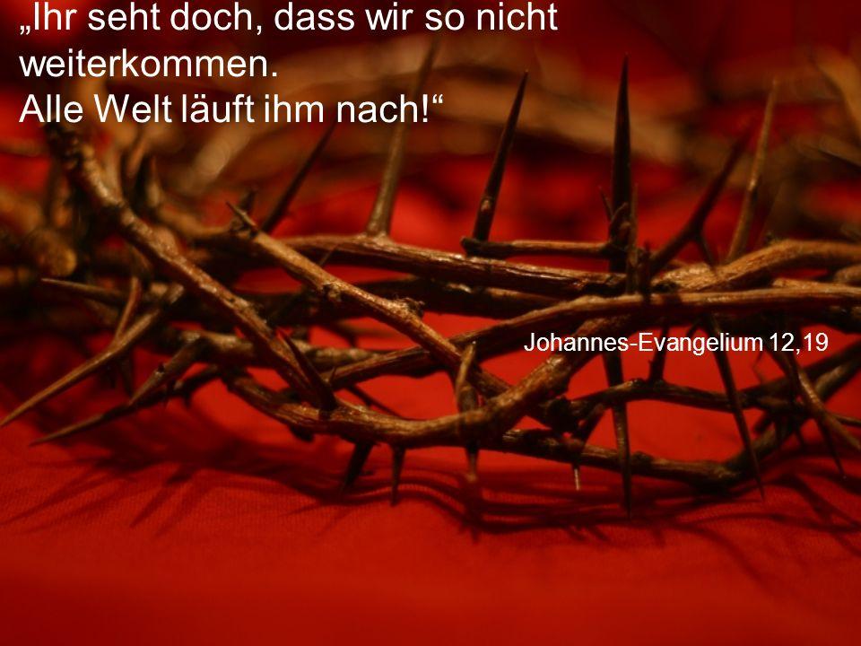 """Johannes-Evangelium 12,19 """"Ihr seht doch, dass wir so nicht weiterkommen."""