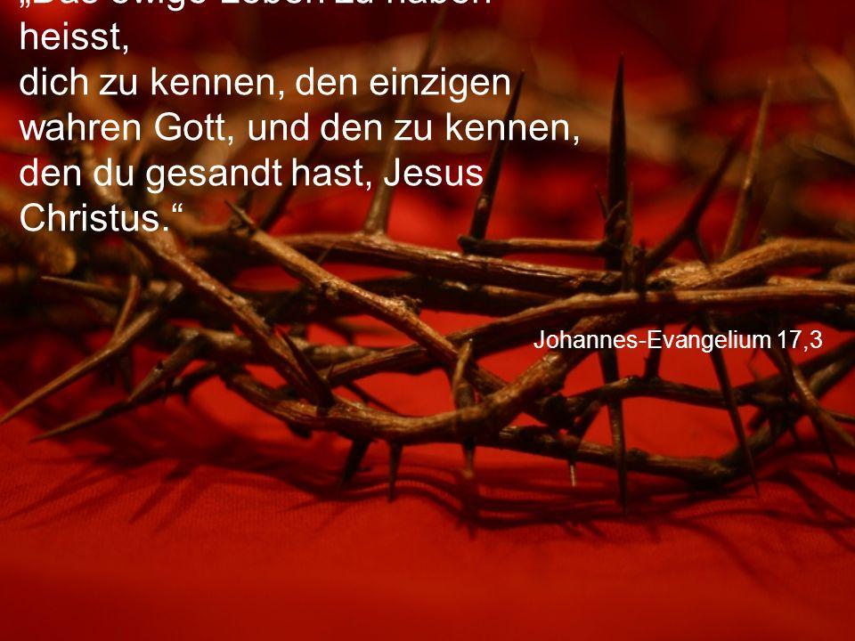 """Johannes-Evangelium 17,3 """"Das ewige Leben zu haben heisst, dich zu kennen, den einzigen wahren Gott, und den zu kennen, den du gesandt hast, Jesus Christus."""