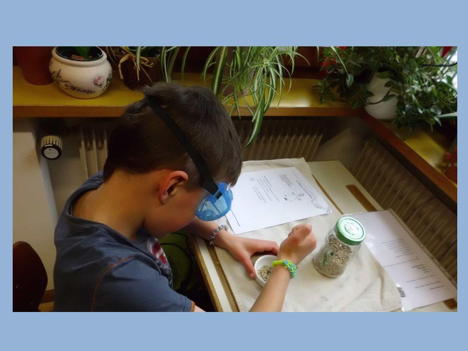 Versuch 1: Die Pipette Für den Versuch benötigst du folgende Sachen: 1 Pipette 1 50 Cent – Münze 1 10 Cent – Münze 1 Becherglas gefüllt mit Wasser 1 kleines Handtuch 1 Schutzbrille Richte diese Dinge auf deinem Platz auf dem kleinen Handtuch her.