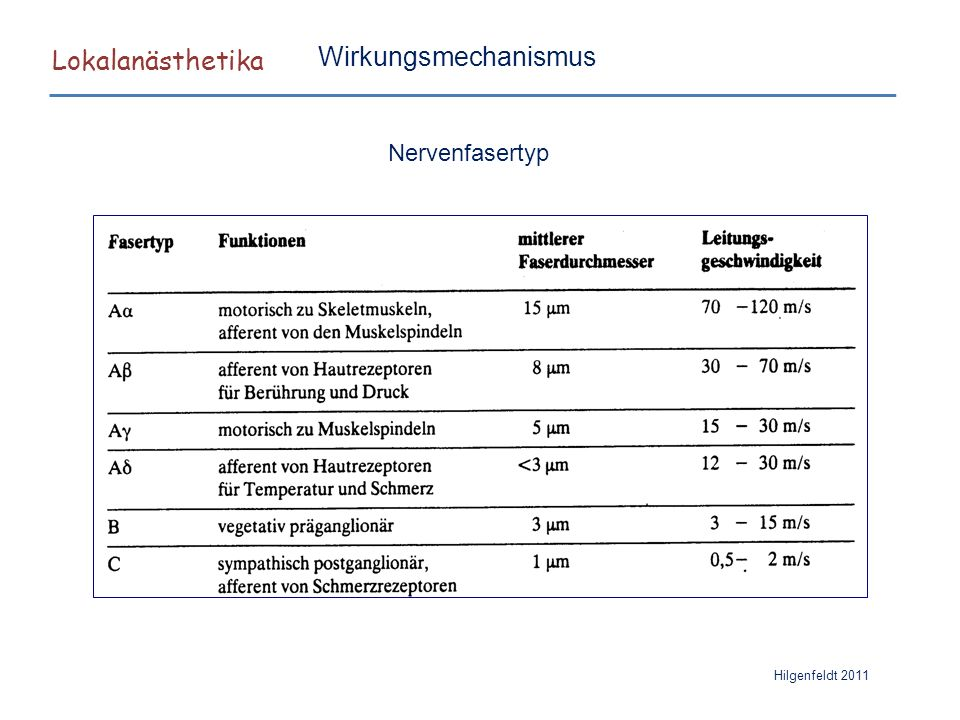 Lokalanästhetika Hilgenfeldt 2011 Nervenfasertyp Wirkungsmechanismus