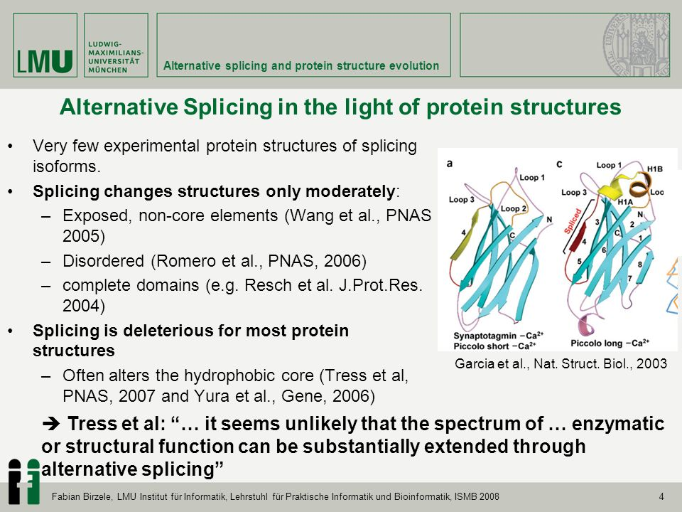 4 Alternative splicing and protein structure evolution Fabian Birzele, LMU Institut für Informatik, Lehrstuhl für Praktische Informatik und Bioinformatik, ISMB 2008 Alternative Splicing in the light of protein structures Very few experimental protein structures of splicing isoforms.