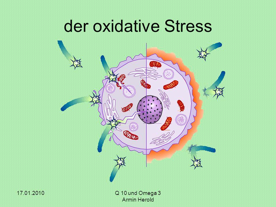 17.01.2010Q 10 und Omega 3 Armin Herold der oxidative Stress