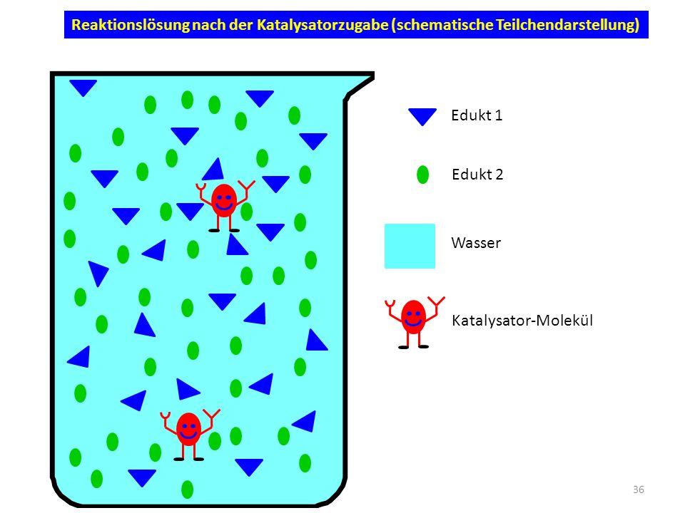 Reaktionslösung nach der Katalysatorzugabe (schematische Teilchendarstellung) Katalysator-Molekül Edukt 1 Edukt 2 Wasser 36