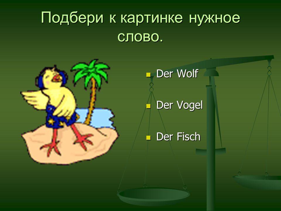Подбери к картинке нужное слово. Der Wolf Der Vogel Der Fisch
