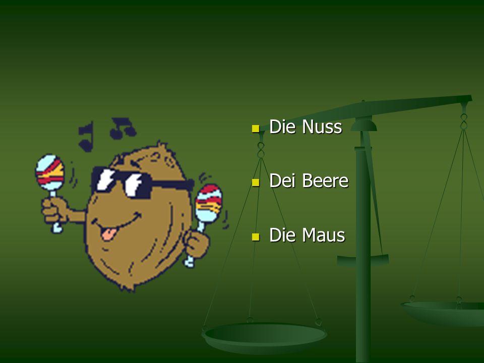 Die Nuss Dei Beere Die Maus