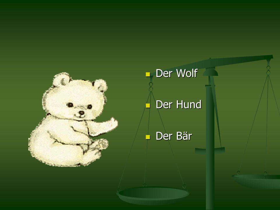 Der Wolf Der Hund Der Bär