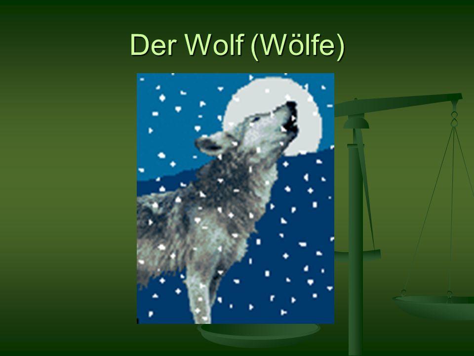 Der Wolf (Wölfe)