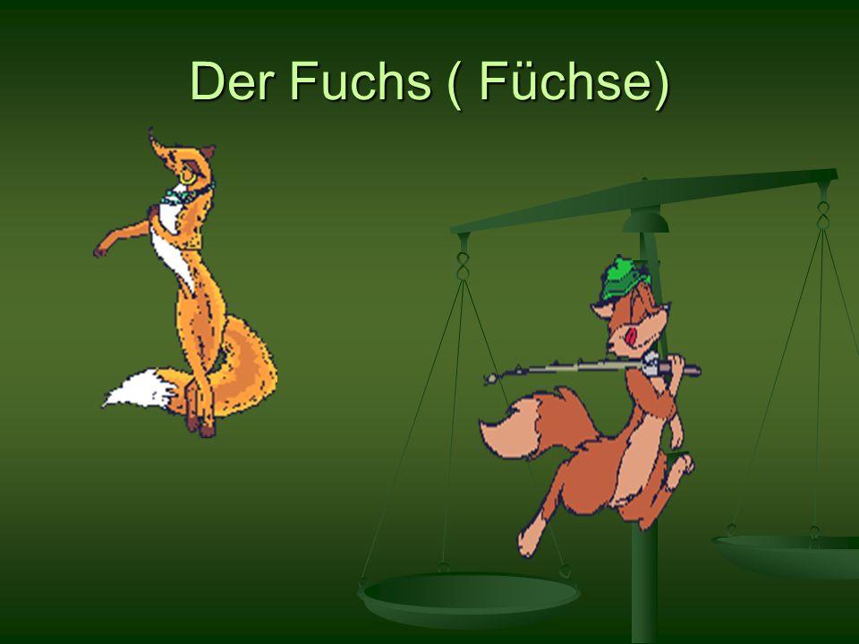 Der Fuchs ( Füchse)