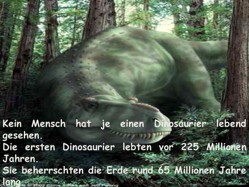Kein Mensch hat je einen Dinosaurier lebend gesehen.