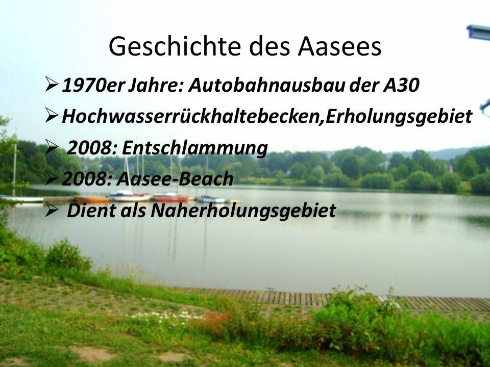 Geschichte des Aasees  1970er Jahre: Autobahnausbau der A30  Hochwasserrückhaltebecken,Erholungsgebiet  2008: Entschlammung  2008: Aasee-Beach  Dient als Naherholungsgebiet