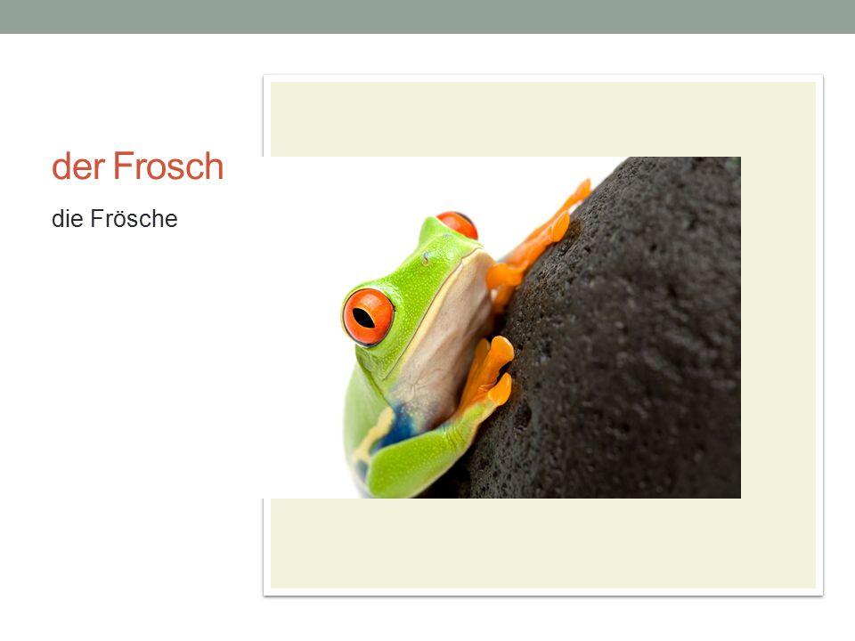 der Frosch die Frösche