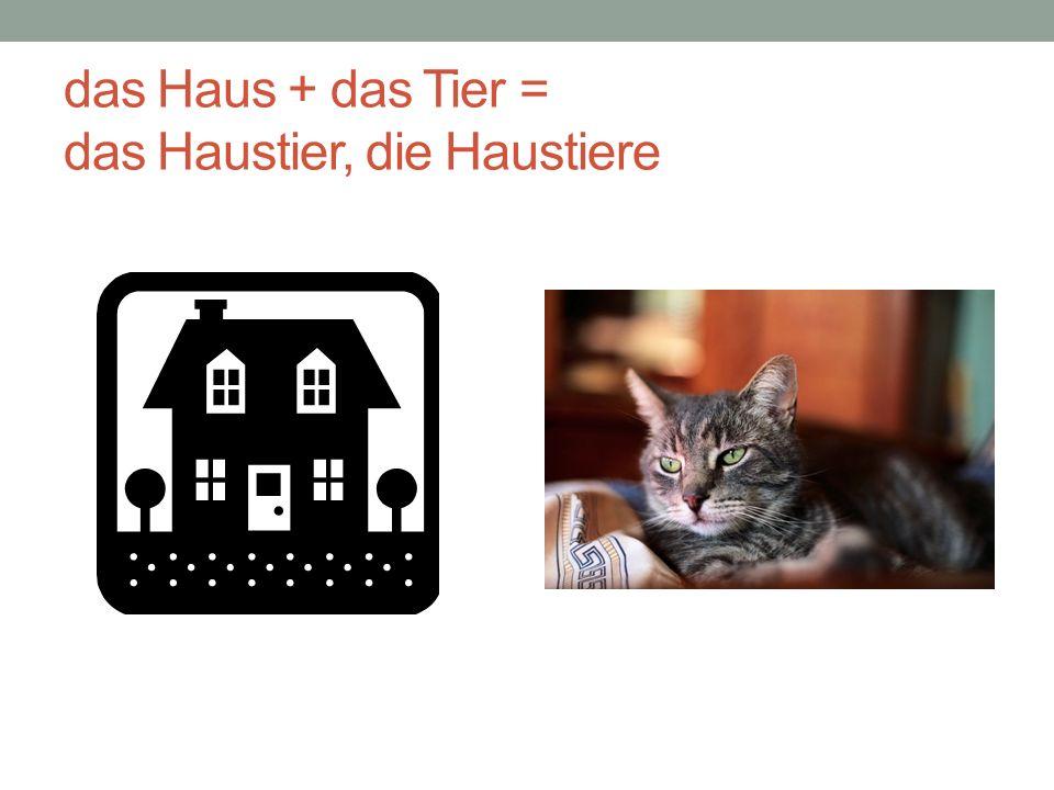 MEINE LIEBLINGSTIERE-1 Haustiere