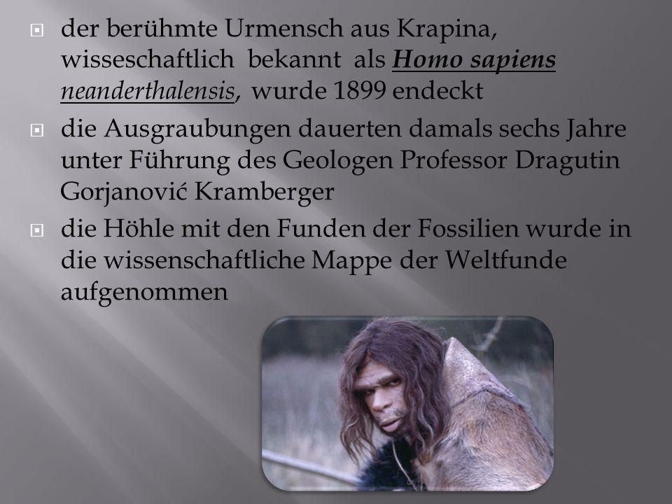  der berühmte Urmensch aus Krapina, wisseschaftlich bekannt als Homo sapiens neanderthalensis, wurde 1899 endeckt  die Ausgraubungen dauerten damals sechs Jahre unter Führung des Geologen Professor Dragutin Gorjanović Kramberger  die Höhle mit den Funden der Fossilien wurde in die wissenschaftliche Mappe der Weltfunde aufgenommen