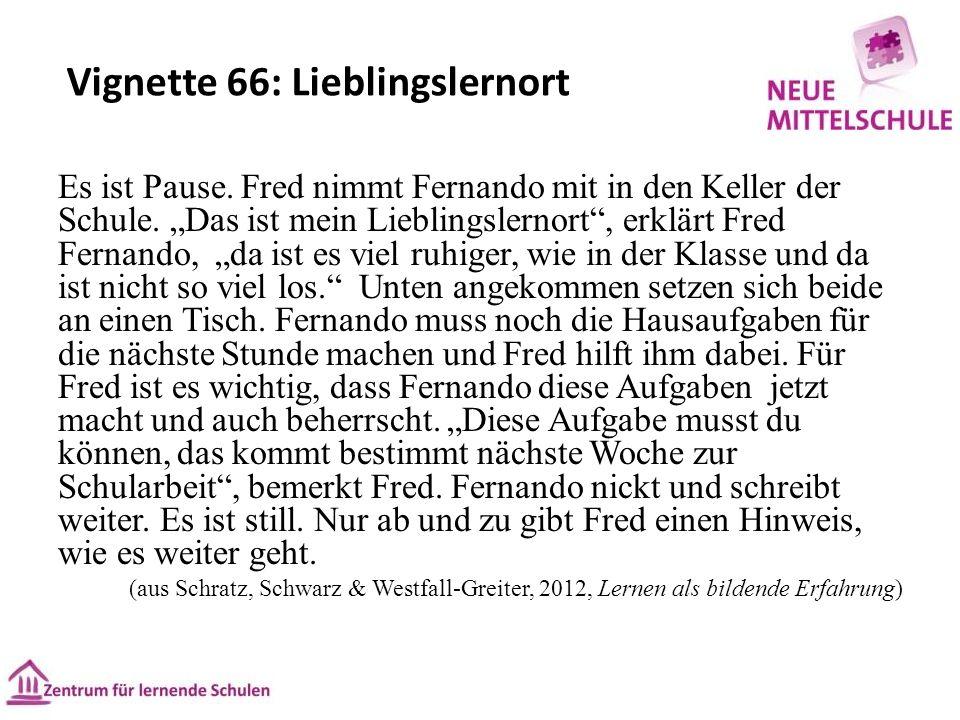 Vignette 66: Lieblingslernort Es ist Pause. Fred nimmt Fernando mit in den Keller der Schule.