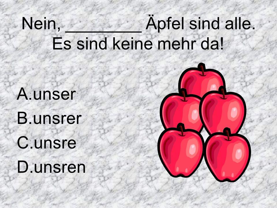 Nein, ________ Äpfel sind alle. Es sind keine mehr da! A.unser B.unsrer C.unsre D.unsren