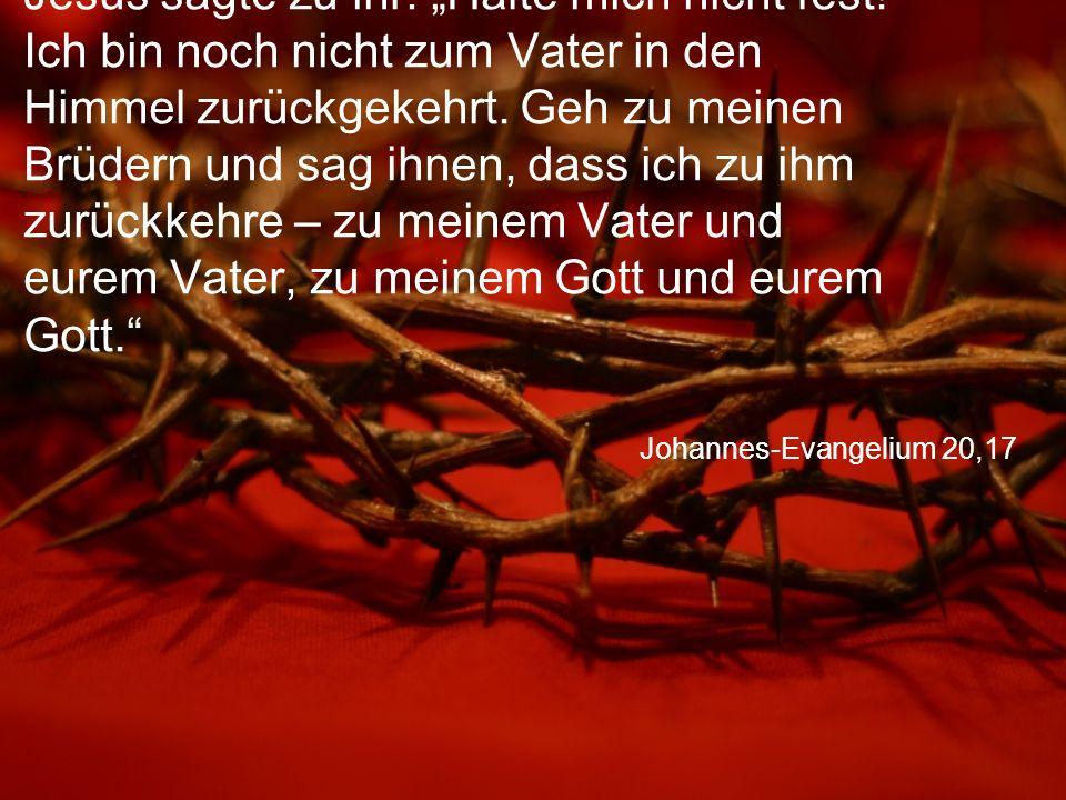 """Johannes-Evangelium 20,17 Jesus sagte zu ihr: """"Halte mich nicht fest."""