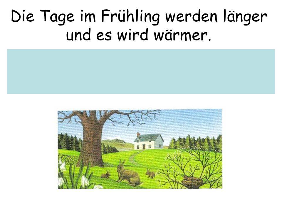 Die Tage im Frühling werden länger und es wird wärmer.