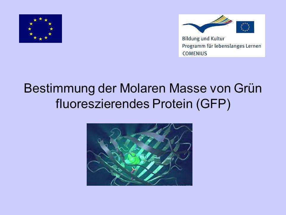 Bestimmung der Molaren Masse von Grün fluoreszierendes Protein (GFP)