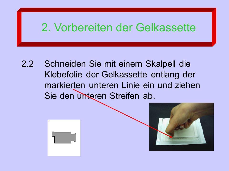 2.2Schneiden Sie mit einem Skalpell die Klebefolie der Gelkassette entlang der markierten unteren Linie ein und ziehen Sie den unteren Streifen ab.