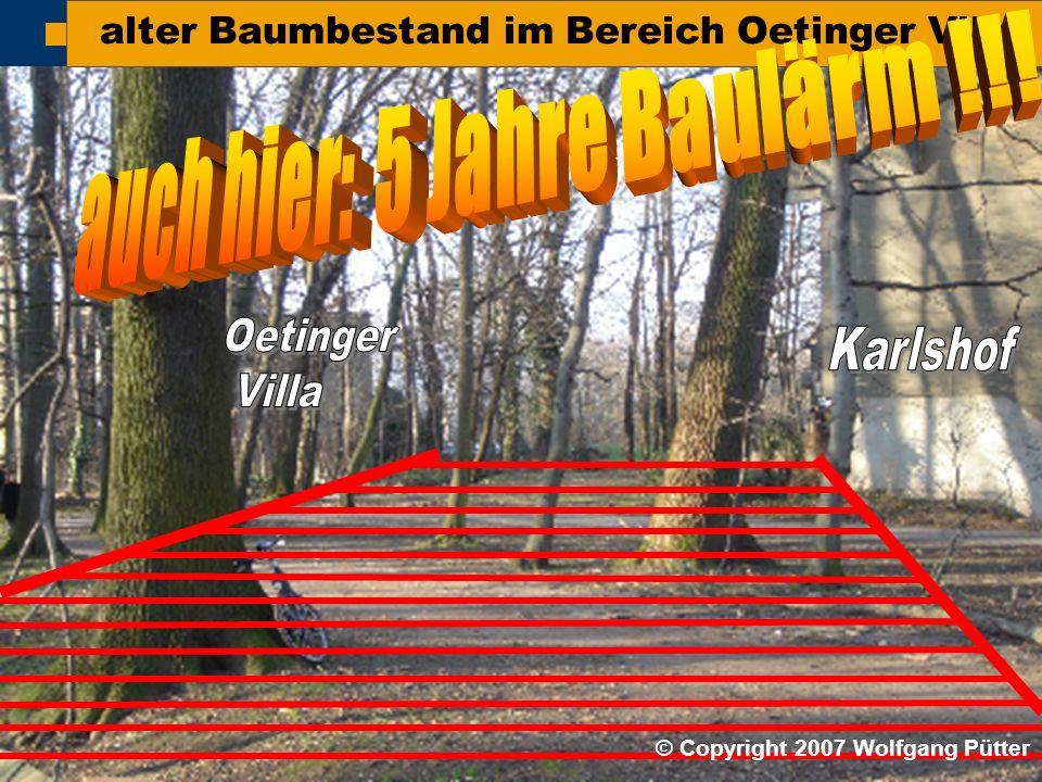  BI ONO ( Wolfgang Pütter) alter Baumbestand im Bereich Oetinger Villa © Copyright 2007 Wolfgang Pütter